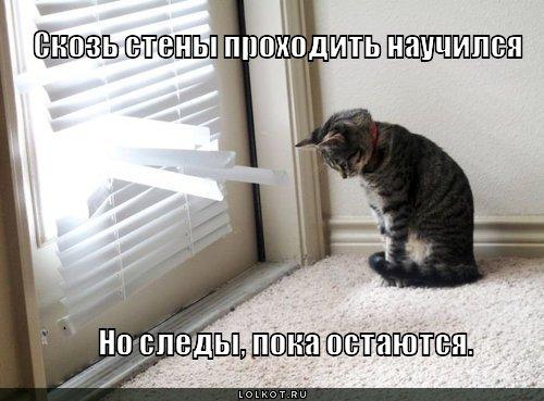 skoz-steny_1320590929 (500x369, 43Kb)