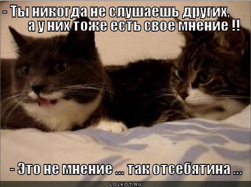 svoyo-mneniye_1344360240 (500x373, 53Kb)