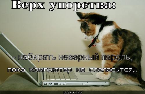 verh-uporstva_1341418457 (500x327, 50Kb)