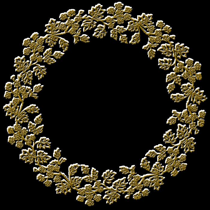Пионы цветы пнг