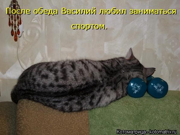 kotomatritsa_Cu (600x450, 42Kb)