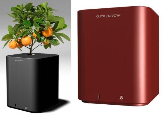 электронный горшок для цветов Click and Grow 1 (550x388, 20Kb)