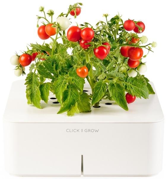 электронный горшок для цветов Click and Grow 3 (563x604, 89Kb)