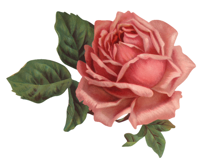Valley_of_Roses_emb_005 (700x569, 408Kb)