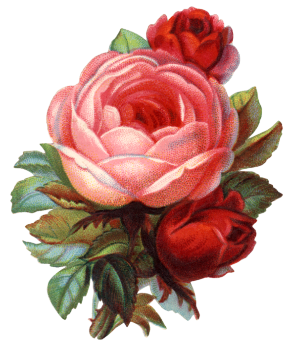 Valley_of_Roses_emb_010 (588x700, 561Kb)