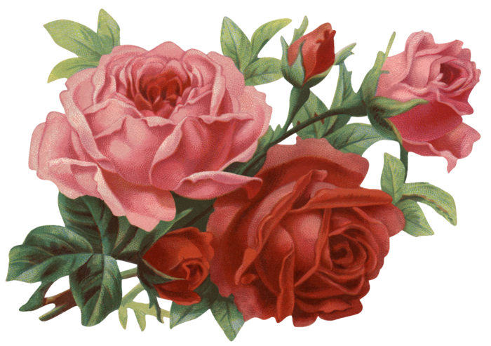 Valley_of_Roses_emb_014 (700x493, 509Kb)