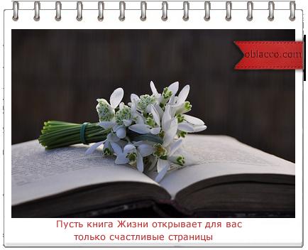3518263_byketiek (434x352, 153Kb)