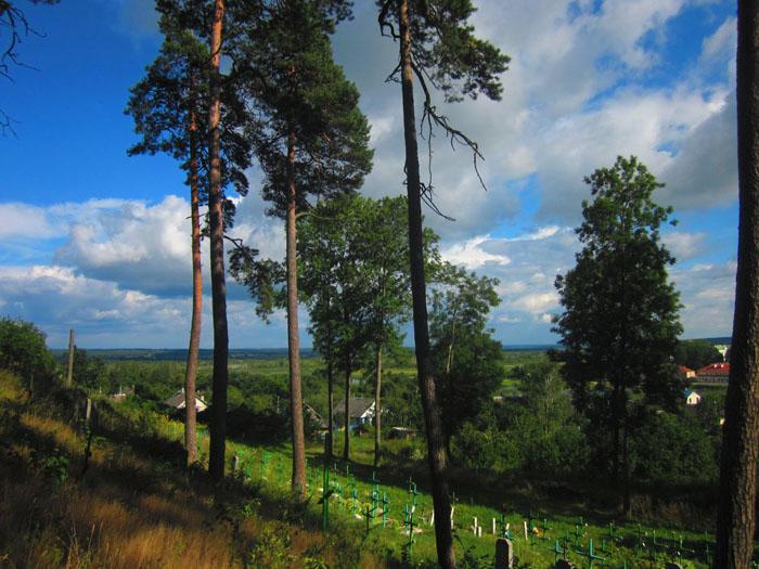 30 Жировичи кладбище 6 (700x525, 142Kb)
