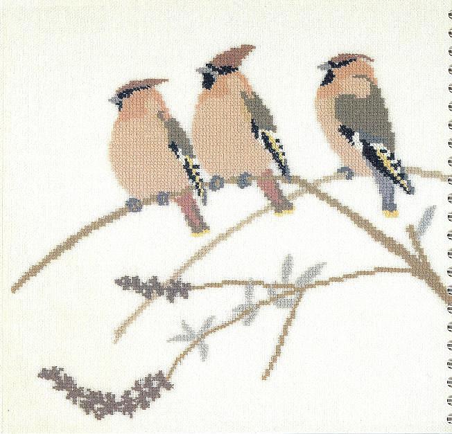 птицы 1993 (3) (652x627, 116Kb)