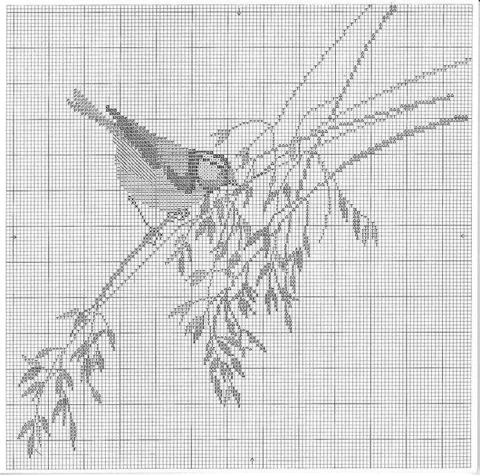 птицы 1993 (6) (700x691, 215Kb)