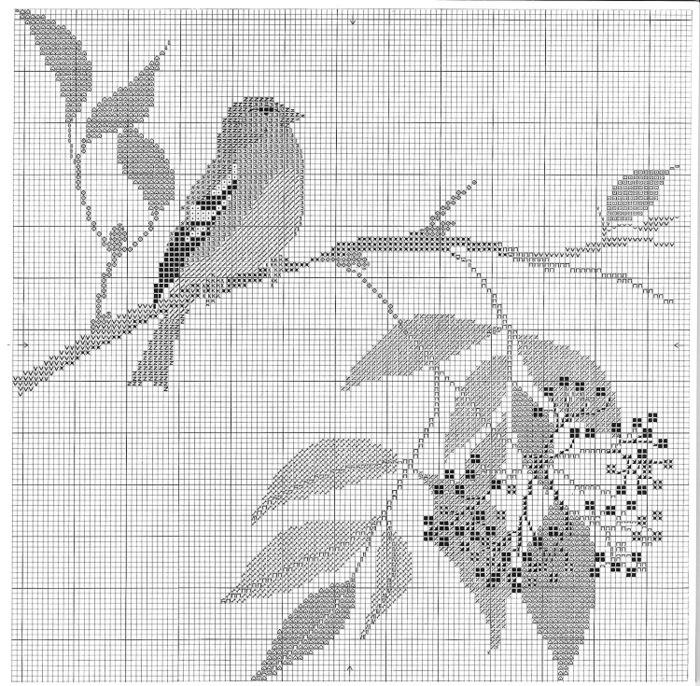 птицы 1993 (18) (700x686, 217Kb)