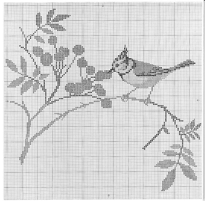 птицы 1993 (20) (700x684, 214Kb)