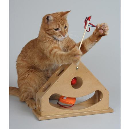 Интересные игрушки для котят