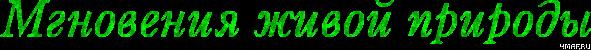 4maf.ru_pisec_2012.08.04_13-54-27_501cf0f2b0b16 (591x50, 39Kb)