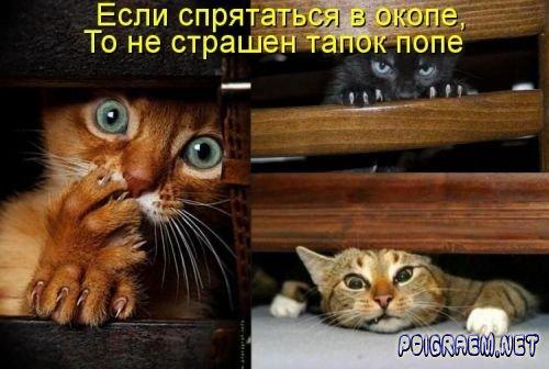 1333415674_poigraem.net3 (500x336, 39Kb)