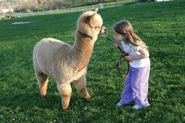 90792584_3365178_Cute_Pictures_of_Kids_and_Pets_8 - Lasting friendships start early, Part 2 - Inspiration & Hope