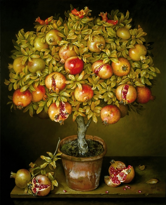 POTTED POMEGRANATE TREE 91x76 cms oil on canvas 1993(1) (567x700, 312Kb)