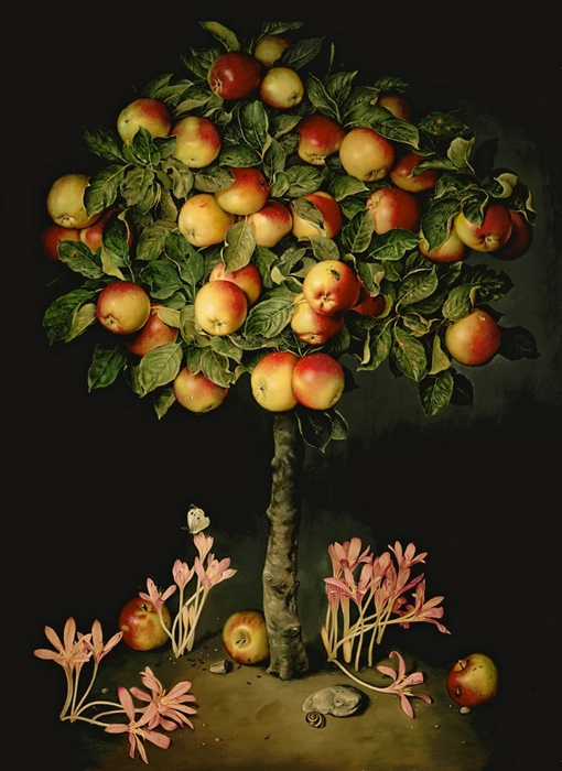 APPLE TREE WITH CROCUSES 114x81 cms Oil on canvas 1996 (510x700, 227Kb)
