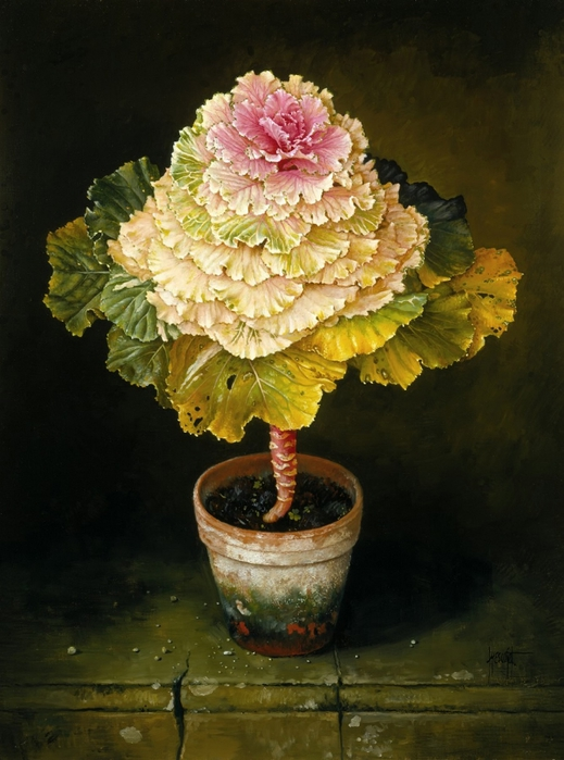 GREEN-PINK ORNAMENTAL CABBAGE 86x71 cms oil on canvas 1991 (519x700, 250Kb)