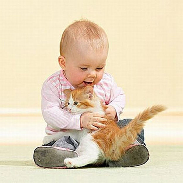 babies_and_cats_01511_002 (625x625, 57Kb)