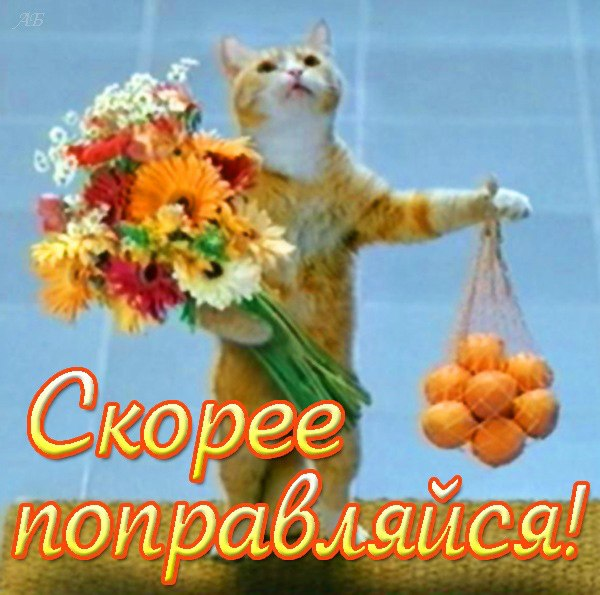 http://img0.liveinternet.ru/images/attach/c/6/90/852/90852696_Vuyzdoravlivay__10_.jpg