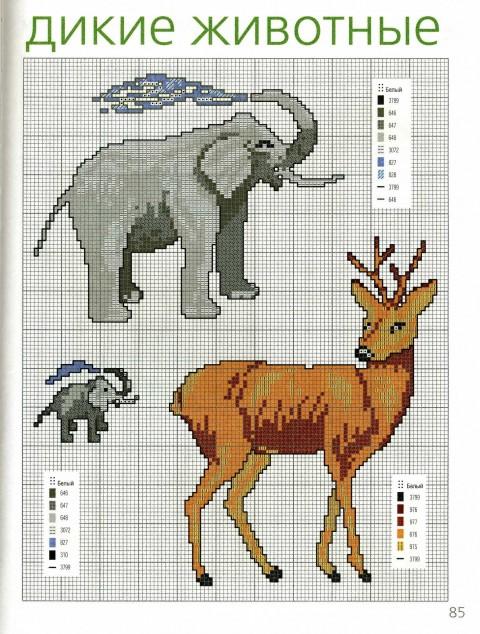 зоо (8) (480x634, 128Kb)