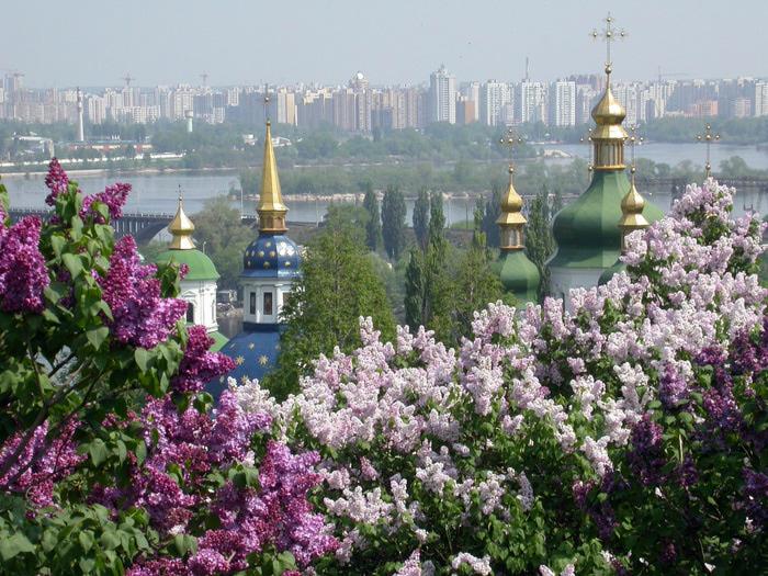Kiev Garden of a lilac (700x525, 204Kb)