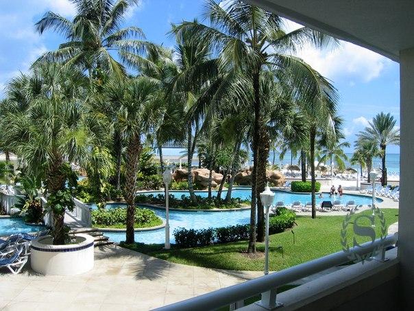 Багамские острова. (604x453, 103Kb)