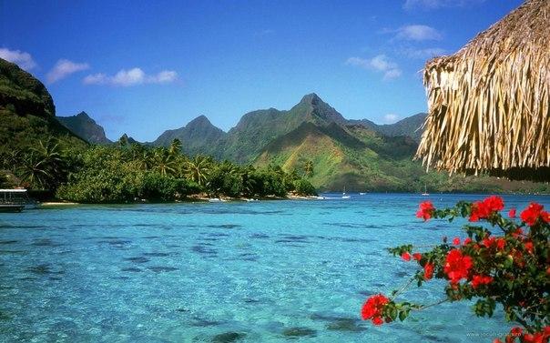 Багамские Острова1 (604x377, 69Kb)