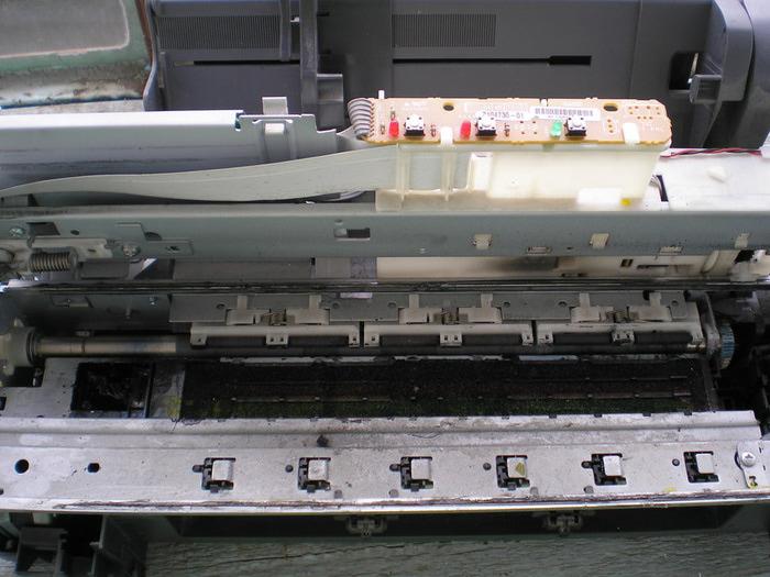 P1010003 (700x525, 110Kb)