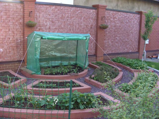 фото дизайн огорода на даче