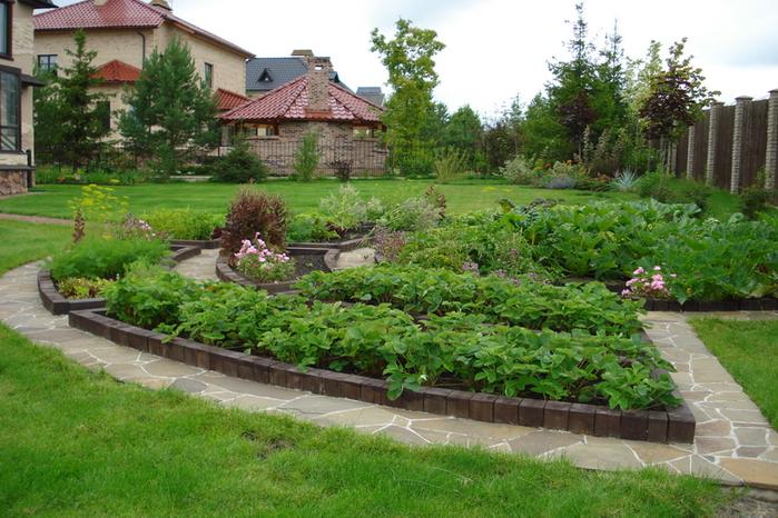 Сад и огород все про наши дачи дача сад