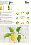 Превью limon3 (478x700, 379Kb)