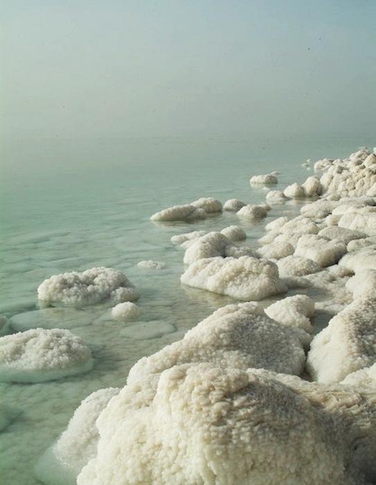 Dead_Sea-16 (543x700, 93Kb)