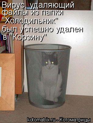 kotomatritsa_ht (305x400, 28Kb)