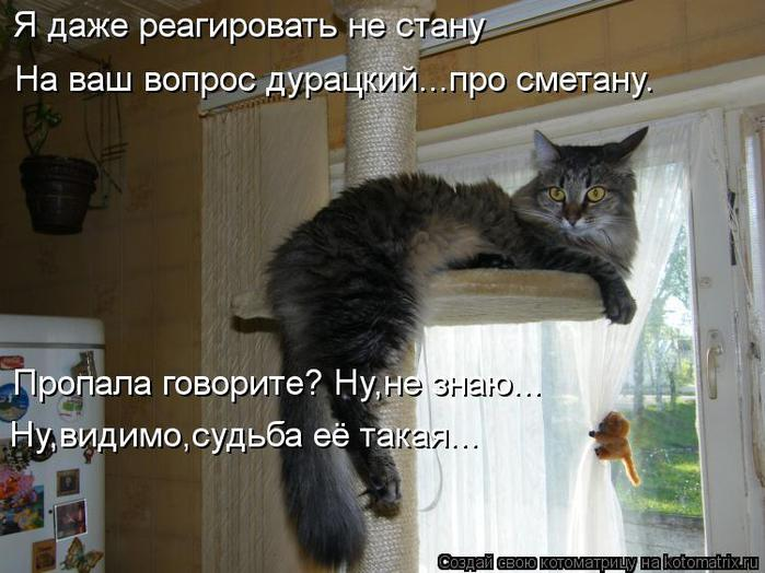 kotomatritsa_IR (700x524, 59Kb)
