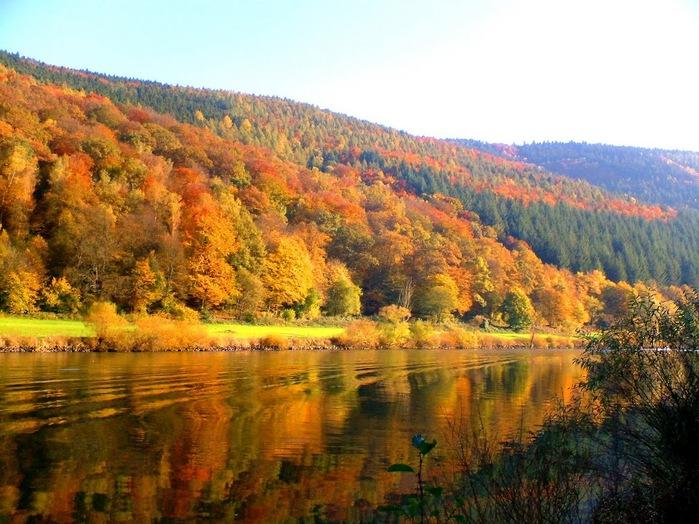 Закружила осень листопадами, заблистала хрупкой красотой... 91595