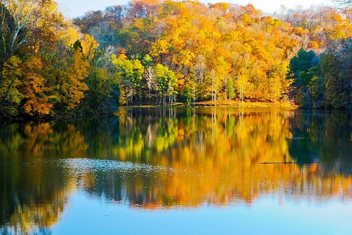 Закружила осень листопадами, заблистала хрупкой красотой... 24600