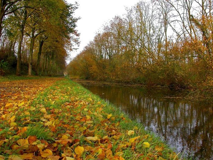 Закружила осень листопадами, заблистала хрупкой красотой... 82468