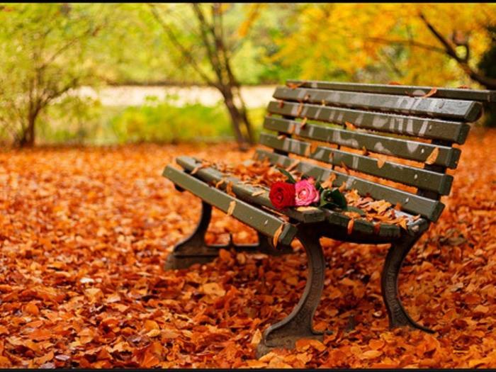 4524271_autumn5 (700x525, 128Kb)