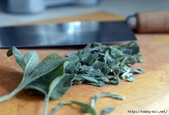 2012_07_02-Herbs01_rect540 (540x366, 98Kb)