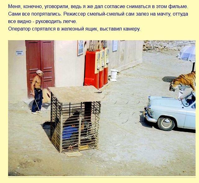 fakty_iz_filma_polosatyjj_rejjs_7_foto_4 (640x588, 87Kb)