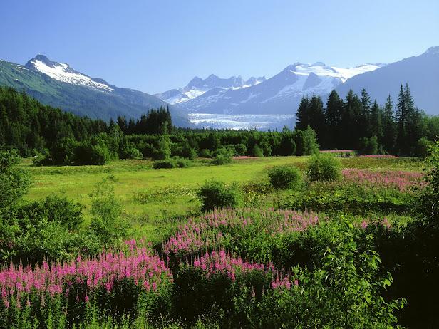 Mendenhall Glacier, Alaska (616x462, 145Kb)