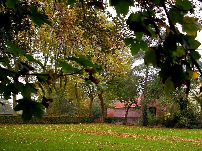 Закружила осень листопадами, заблистала хрупкой красотой... 58717