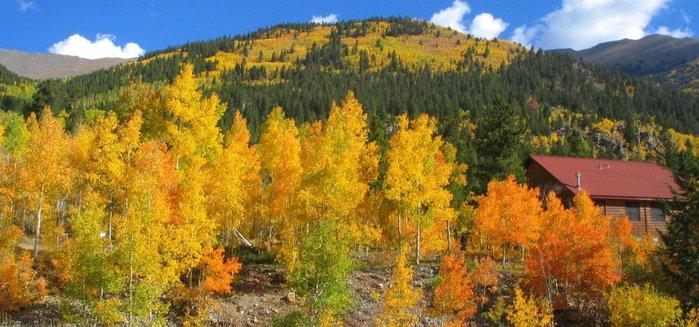 Закружила осень листопадами, заблистала хрупкой красотой... 98958