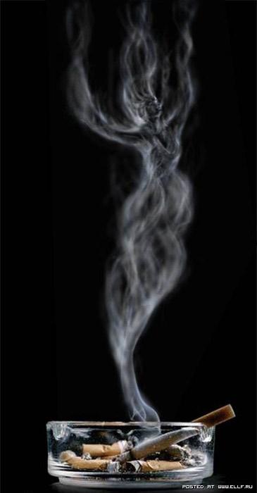 1213826122_smoke_10 (365x700, 27Kb)