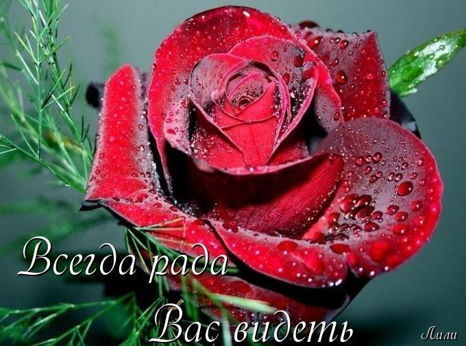 http://img0.liveinternet.ru/images/attach/c/6/91/243/91243988_0_8091f_5a17d710_XL.jpg