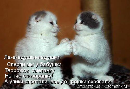kotomatritsa_Es (500x343, 31Kb)