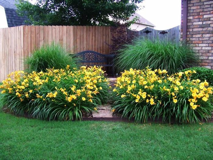 Лилейник - цветок одного дня 113 (700x525, 172Kb)