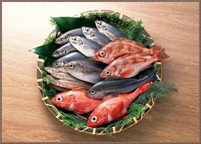 1273156685_1256794635_fish-12 (700x501, 101Kb)